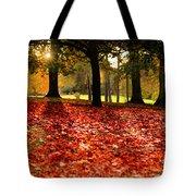 Autumn In Woodthorpe Tote Bag