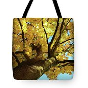 Autumn Is My Favourite Colour Tote Bag