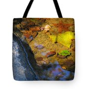 Autumn Jewels Tote Bag