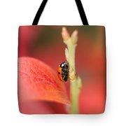 Autumn Ladybird Tote Bag