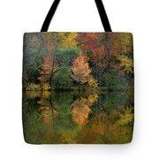 Autumn Lagoon Reflection  Tote Bag