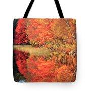 Autumn Lake Scenery Tote Bag