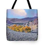 Autumn Landscape In Northern Nevada. Tote Bag