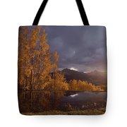 Autumn Landscape Near Telluride Tote Bag