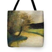 Autumn Landscape Of Brook In The Evening Light Tote Bag