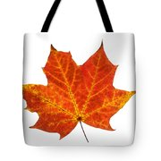 Autumn Leaf 3 Tote Bag