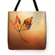 Autumn Leaf Falling By Kaye Menner Tote Bag