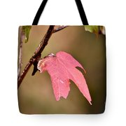 Autumn Leaf Tote Bag