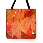 Autumn Leaves Art Prints Orange Fall Leaves Baslee Troutman Tote Bag