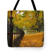 Autumn Leaves At Lafayette Park Tote Bag