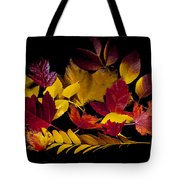 Autumn Leaves Tote Bag by Barry C Donovan