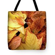 Autumn Leaves Tote Bag by Carlos Caetano