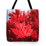 Autumn Leaves Fall Art Bright Red Leaves Baslee Troutman Tote Bag