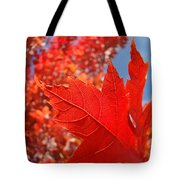 Autumn Leaves Fall Art Red Orange Leaves Blue Sky Baslee Troutman Tote Bag