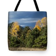 Autumn Leaves In Hart Prairie Tote Bag