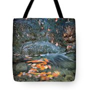 Autumn Leaves In Waterfall Tote Bag