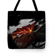 Autumn Leaves... Tote Bag