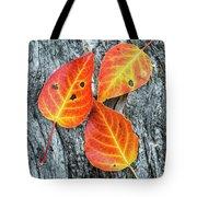 Autumn Leaves On Tree Bark Tote Bag