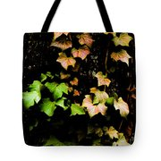 Autumn Leaves Tote Bag by Parker Cunningham