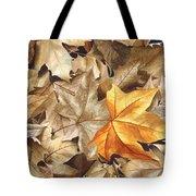 Autumn Leaves Series 2 Tote Bag