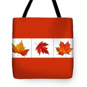 Autumn Leaves Triptych Tote Bag