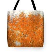 Autumn Leaves2 Tote Bag