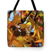 Autumn Leaves4 Tote Bag