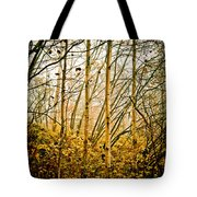 autumn Lines Tote Bag