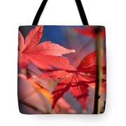 Autumn Maple Tote Bag by Kaye Menner