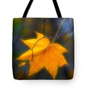Autumn Maple Leaf Tote Bag
