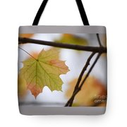 Autumn Maple Leaves Horizontal Tote Bag