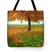 Autumn Maple Tree And Leaves Tote Bag