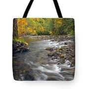 Autumn Meander Tote Bag