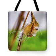 Autumn Milkweed 9 Tote Bag