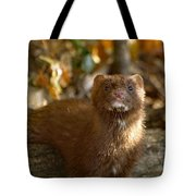 Autumn Mink Tote Bag