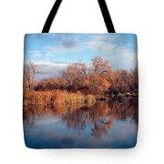 Autumn Mirror Tote Bag
