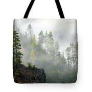 Autumn Mist Tote Bag by Mike  Dawson