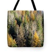 Autumn Mix Tote Bag