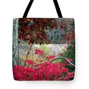 Autumn Mixtures Tote Bag