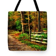 Autumn Moment - Allaire State Park Tote Bag