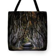 Autumn Morning At Dark Hedges Alley  Tote Bag