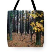 Autumn Morning Tote Bag