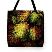 Autumn Motif Tote Bag