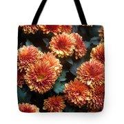 Autumn Mums - A Group Portrait Tote Bag