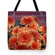 Autumn Mums - Against Brick Tote Bag