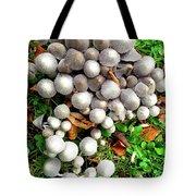 Autumn Mushrooms Tote Bag