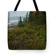 Autumn Nor' Easter Tote Bag