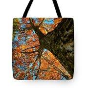 Autumn Oak Tote Bag