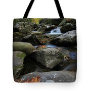 Autumn On Little River In The Smoky Mountains Tote Bag