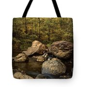 Autumn On The Creek  Tote Bag